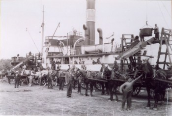 Unloading Coal, Paoli's Wharf, c 1928 Photo courtesy of the David MacNevin Collection, City of Charlottetown Archives