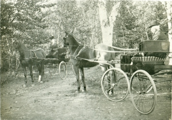 Horse and Carriage, Victoria Park c. 1900 <br> Frank Stewart Collection, City of Charlottetown Archives