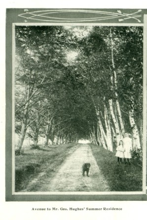 Avenue to Mr. Geo. Hughes Summer Residence <br> Frank M Stewart Collection, City of Charlottetown Archives